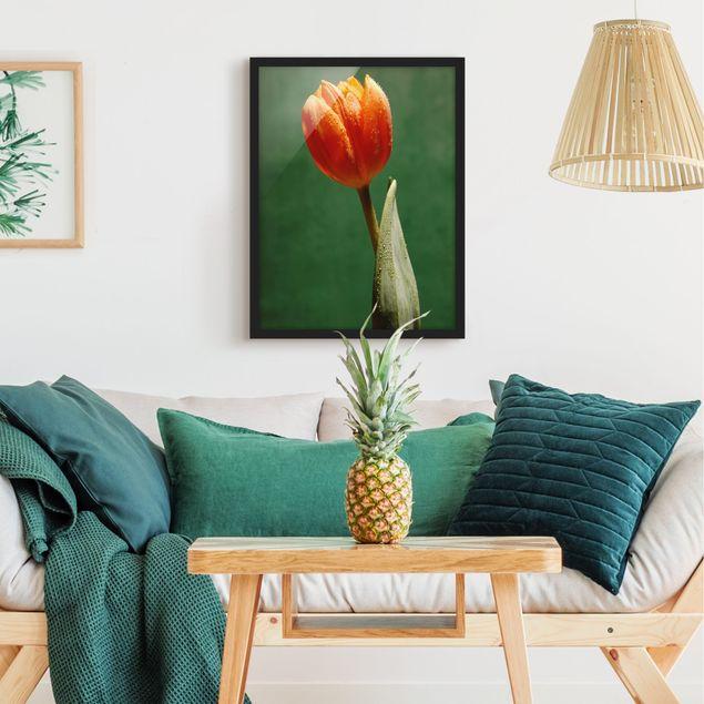 Bild mit Rahmen - Ultimate Tulip - Hochformat 3:4