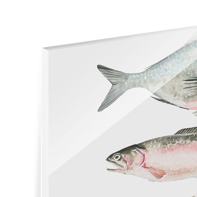 Glas Spritzschutz - Sieben Fische in Aquarell II - Quadrat - 1:1