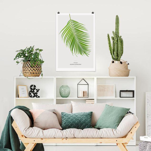 Poster - Tropisches Blatt Areca Palme - Hochformat 3:2