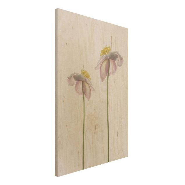 Holzbild - Rosa Anemonenblüten - Hochformat 3:2