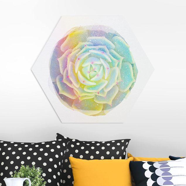 Hexagon Bild Forex - Wasserfarben - Sukkulente - Echeveria Ben Badis