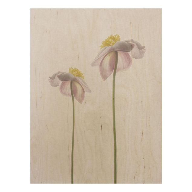 Holzbild - Rosa Anemonenblüten - Hochformat 4:3