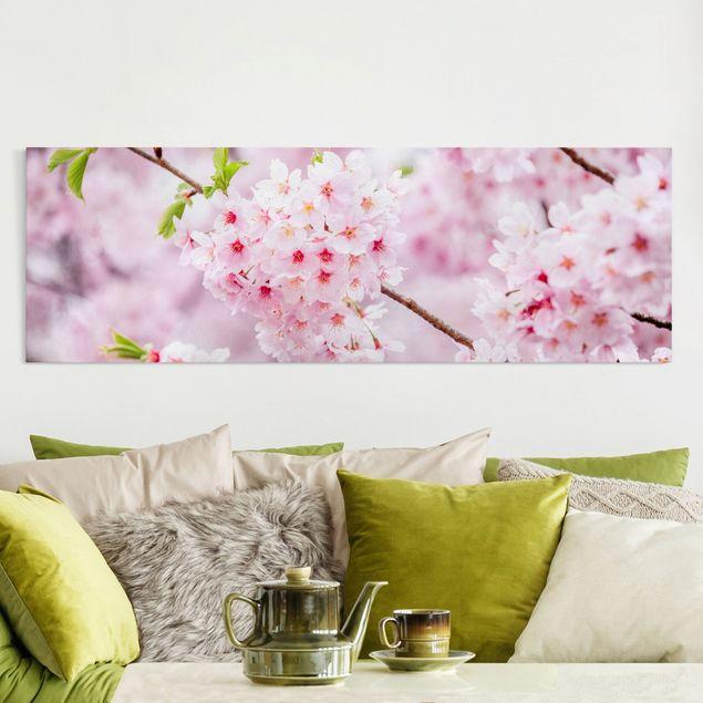 Leinwandbild - Japanische Kirschblüten - Panorama 3:1