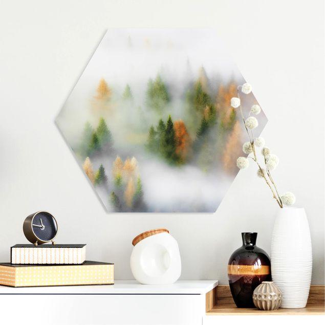 Hexagon Bild Forex - Nebelwald im Herbst