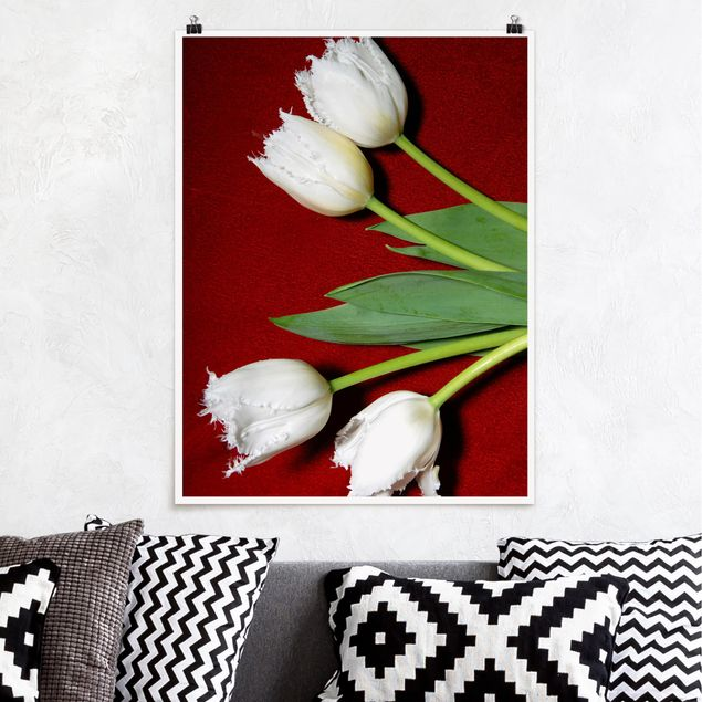 Poster - White Tulips in Feathers - Hochformat 3:4