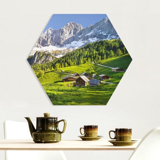 Hexagon Bild Forex - Steiermark Almwiese