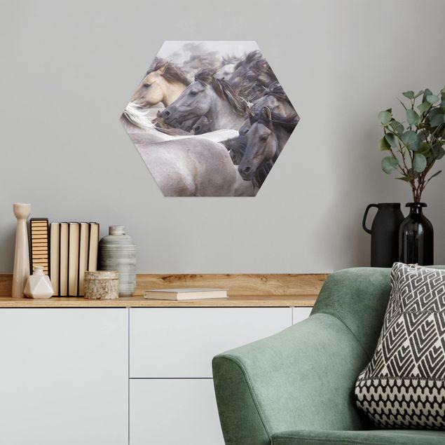 Hexagon Bild Alu-Dibond - Wildpferde