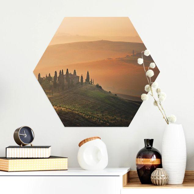 Hexagon Bild Alu-Dibond - Dreams of Tuscany
