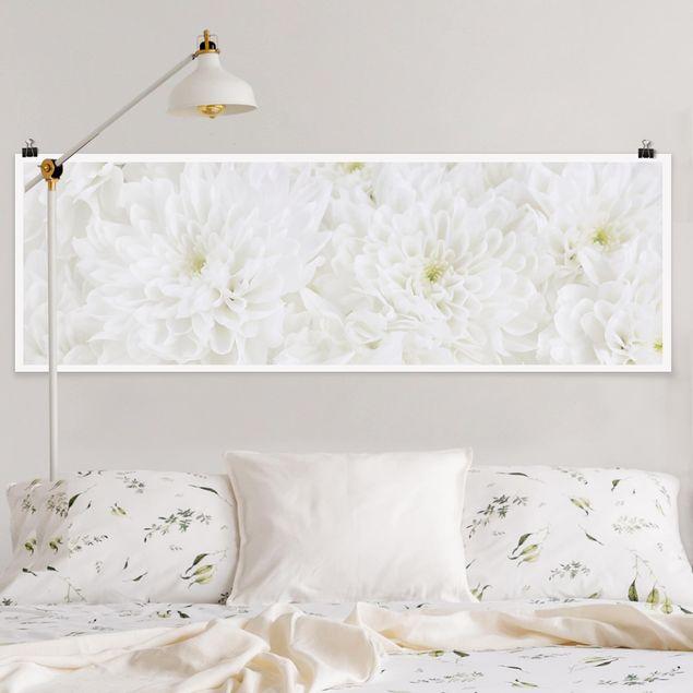 Poster - Dahlien Blumenmeer weiß - Panorama Querformat