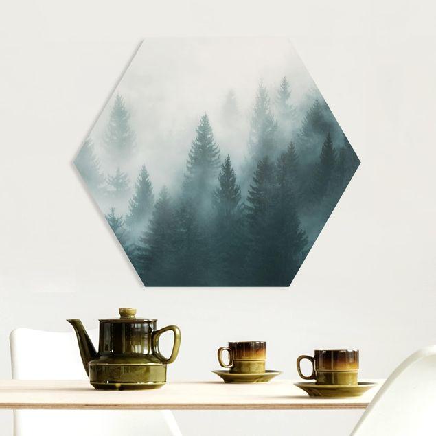 Hexagon Bild Forex - Nadelwald im Nebel