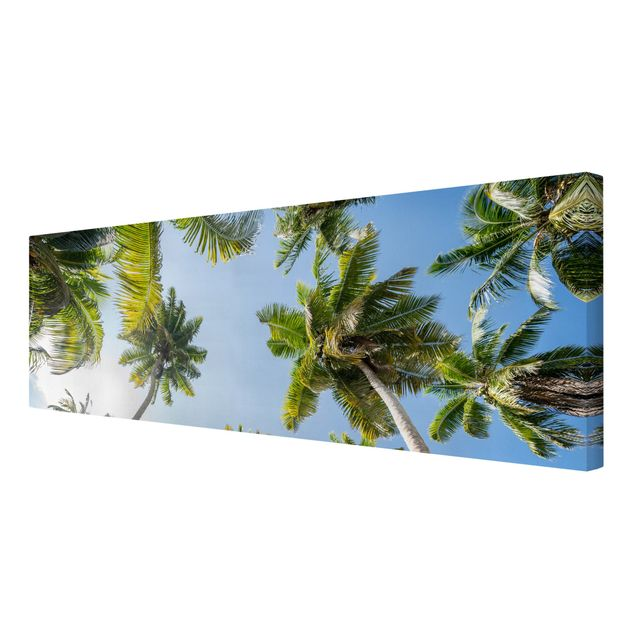 Leinwandbild - Palmen Himmel - Panorama 3:1