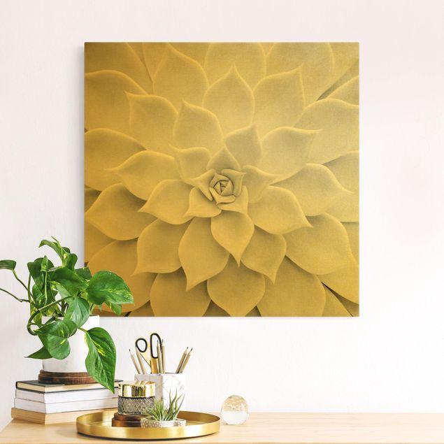 Leinwandbild Gold - Kaktus Sukkulente - Quadrat 1:1