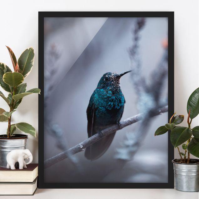 Bild mit Rahmen - Kolibri im Winter - Hochformat 3:4