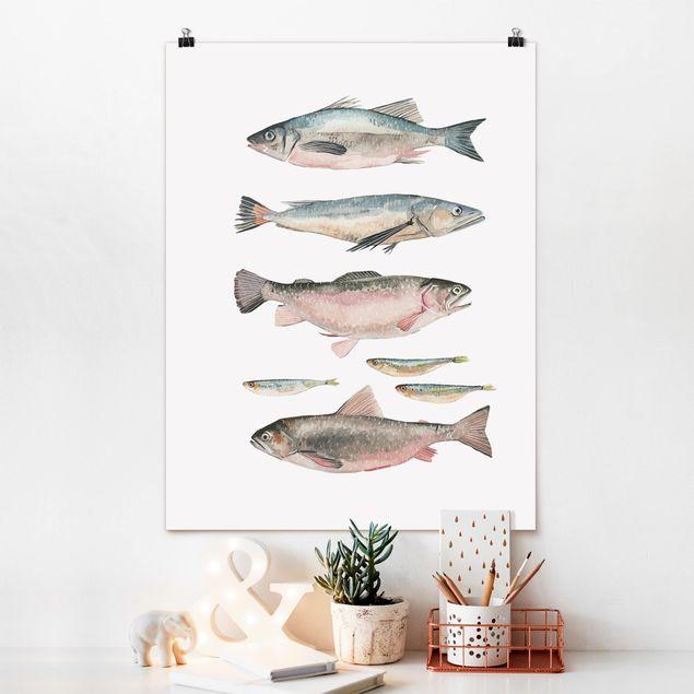 Poster - Sieben Fische in Aquarell I - Hochformat 3:4