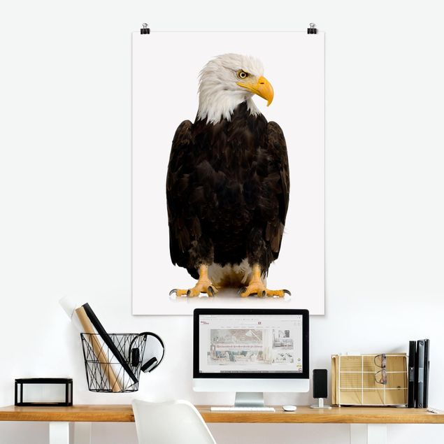 Poster - Eye of the Eagle - Hochformat 3:2