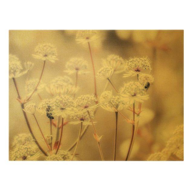 Leinwandbild Gold - Federleichte Wildblumen - Querformat 4:3
