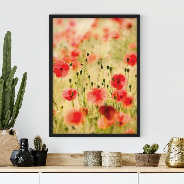 Bild mit Rahmen - Summer Poppies - Hochformat 3:4