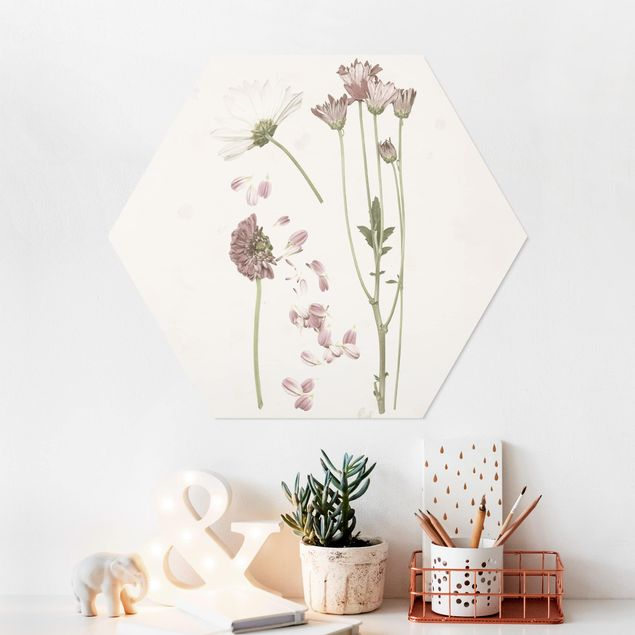 Hexagon Bild Forex - Herbarium in rosa II