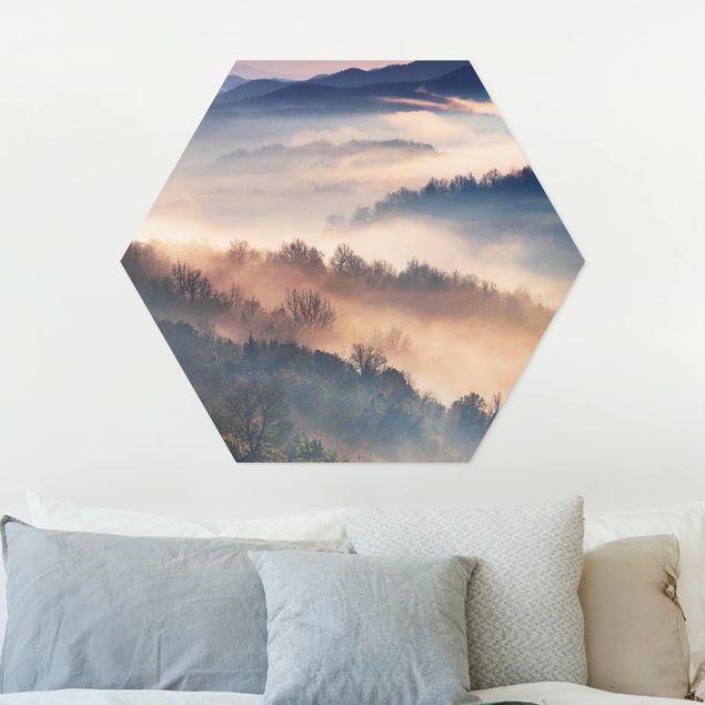 Hexagon Bild Forex - Nebel bei Sonnenuntergang