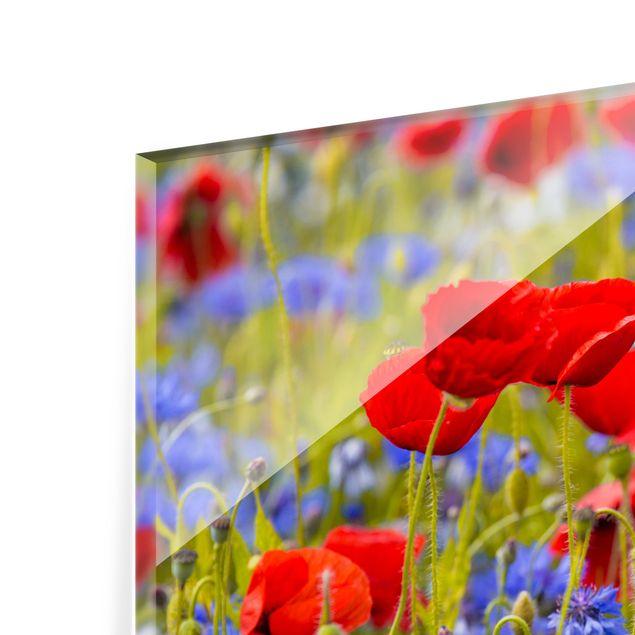 Glas Spritzschutz - Sommerwiese mit Mohn und Kornblumen - Querformat - 4:3