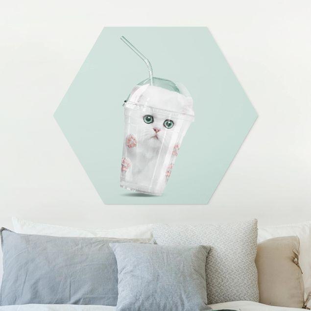 Hexagon Bild Forex - Jonas Loose - Shake mit Katze