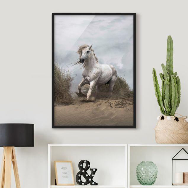 Bild mit Rahmen - Weißes Pferd in den Dünen - Hochformat 3:4