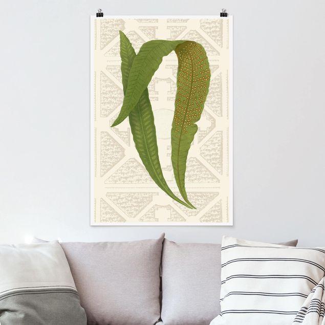 Poster - Farne des Gartens IV - Hochformat 3:2