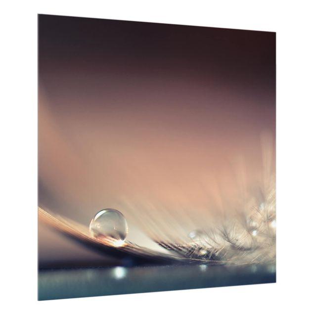 Glas Spritzschutz - Story of a Waterdrop - Quadrat - 1:1