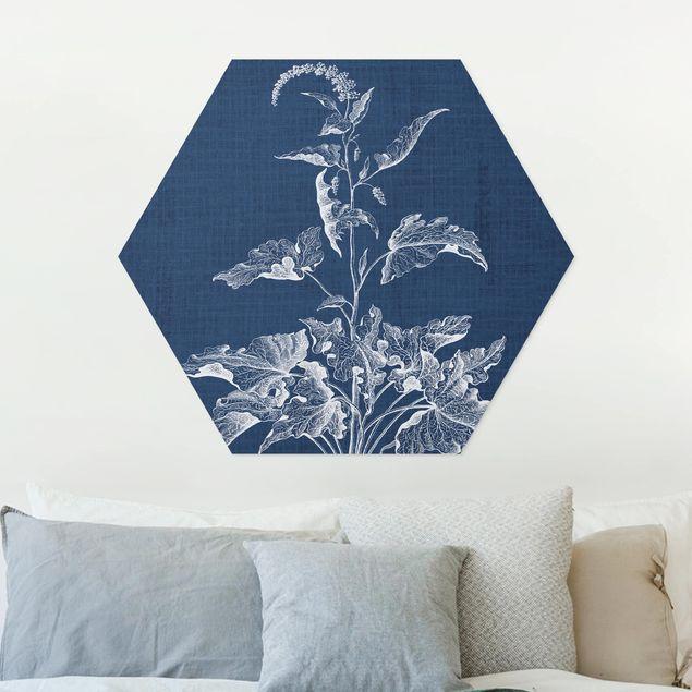 Hexagon Bild Forex - Denim Pflanzenstudie II