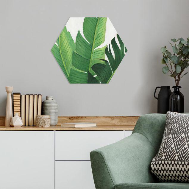 Hexagon Bild Forex - Lieblingspflanzen - Banane