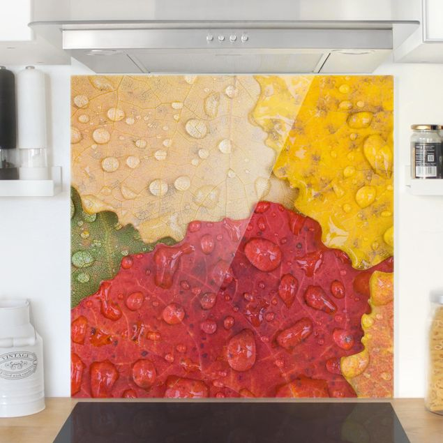 Glas Spritzschutz - Wassertropfen auf bunten Blättern - Quadrat - 1:1