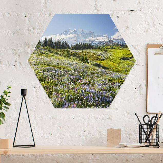 Hexagon Bild Forex - Bergwiese mit Blumen vor Mt. Rainier