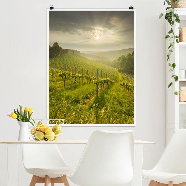 Poster - Sonnenstrahlen Weinberg - Hochformat 3:4
