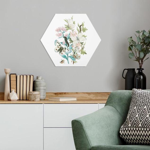 Hexagon Bild Forex - Britische Schmetterlinge I