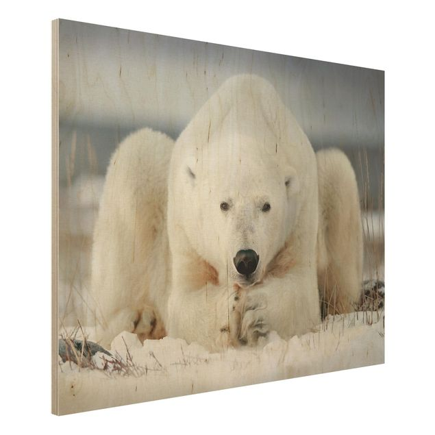 Holzbild - Nachdenklicher Eisbär - Querformat 3:4