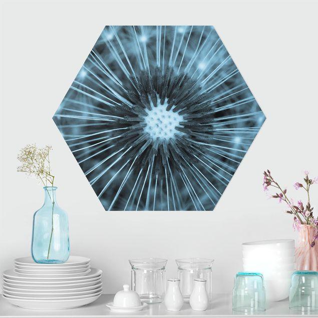 Hexagon Bild Forex - Blau getönte Pusteblume