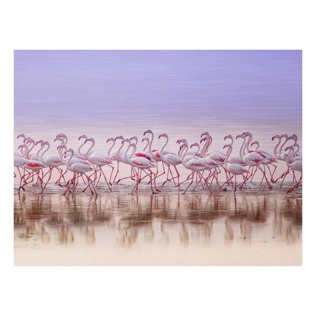 Forex Fine Art Print - Flamingo Party - Querformat 3:4