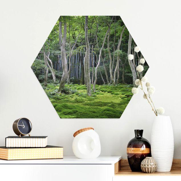 Hexagon Bild Alu-Dibond - Japanischer Wald