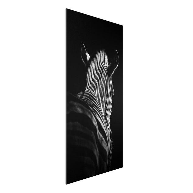 Forex Fine Art Print - Dunkle Zebra Silhouette - Hochformat 2:1