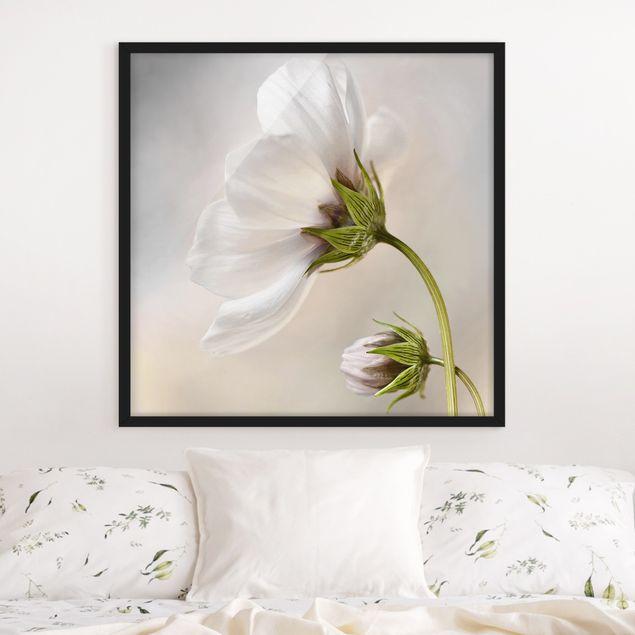 Bild mit Rahmen - Himmlischer Blütentraum - Quadrat 1:1