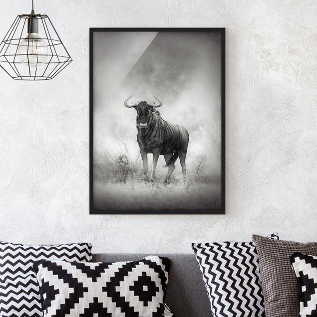 Bild mit Rahmen - Staring Wildebeest - Hochformat 3:4