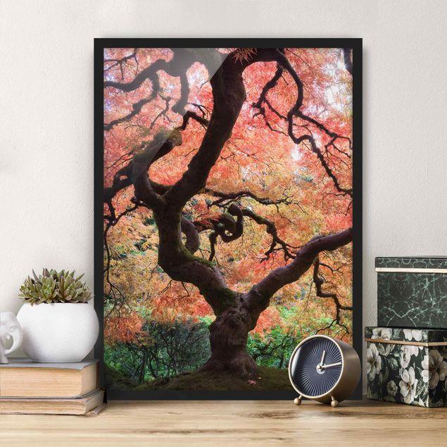 Bild mit Rahmen - Japanischer Garten - Hochformat 3:4