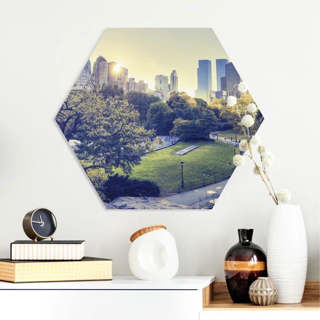 Hexagon Bild Forex - Peaceful Central Park