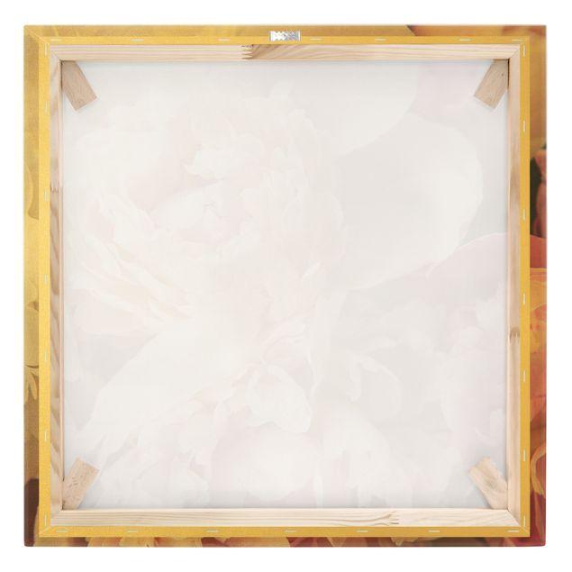 Leinwandbild Gold - Blühende Pfingstrosen - Quadrat 1:1