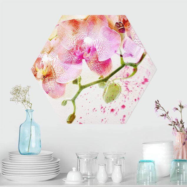 Hexagon Bild Alu-Dibond - Aquarell Blumen Orchideen