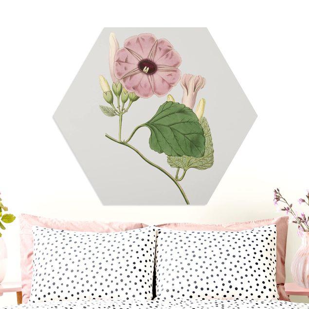 Hexagon Bild Forex - Florale Schmuckstücke III
