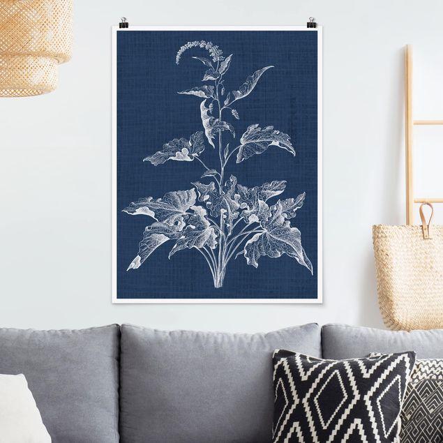 Poster - Denim Pflanzenstudie II - Hochformat 3:4