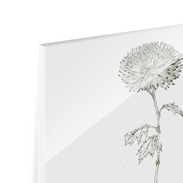 Glas Spritzschutz - Botanisches Aquarell - Löwenzahn - Quadrat - 1:1
