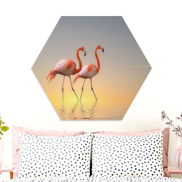 Hexagon Bild Forex - Flamingo Love