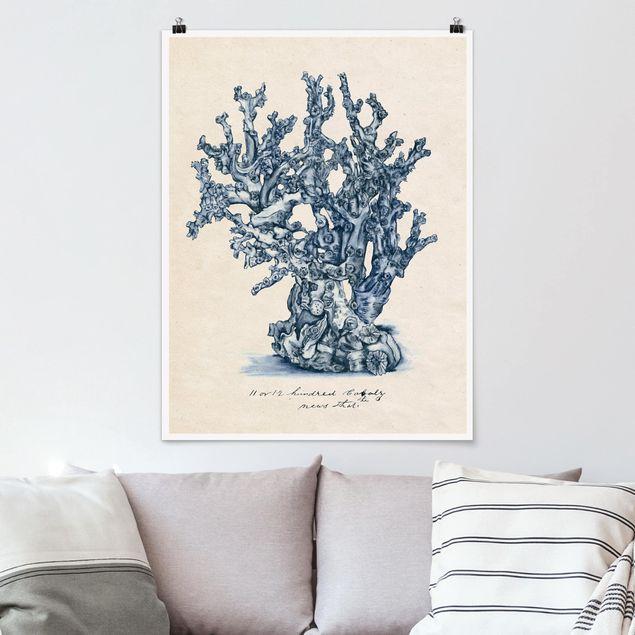 Poster - Meereskorallen Studie II - Hochformat 3:4